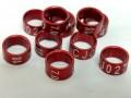 Anilhas Fechadas em Aluminio 7.0 mm Vermelhas (10 anilhas) Ano 2018