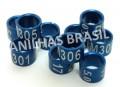 Anilhas Fechadas em Aluminio 5.0 mm Azul (10 anilhas) Ano 2017